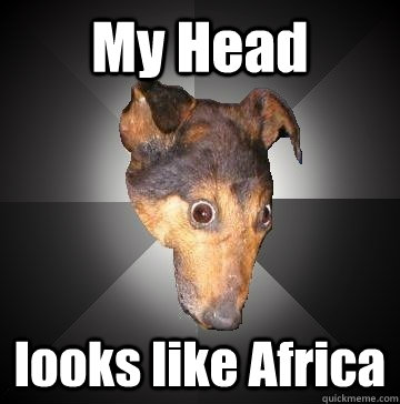 My Head looks like Africa  Depression Dog