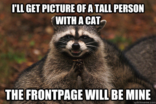 I'll get picture of a tall person with a cat the frontpage will be mine - I'll get picture of a tall person with a cat the frontpage will be mine  Insidious Racoon 2