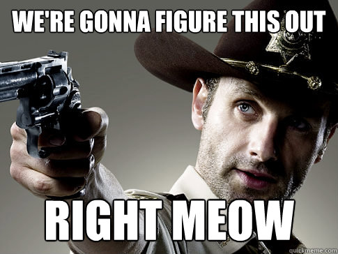 We're gonna figure this out RIGHT MEOW - We're gonna figure this out RIGHT MEOW  Rick Grimes on TV