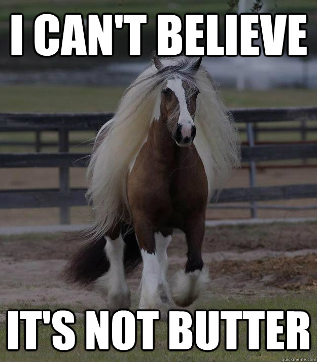 i can't believe it's not butter - i can't believe it's not butter  fabio horse