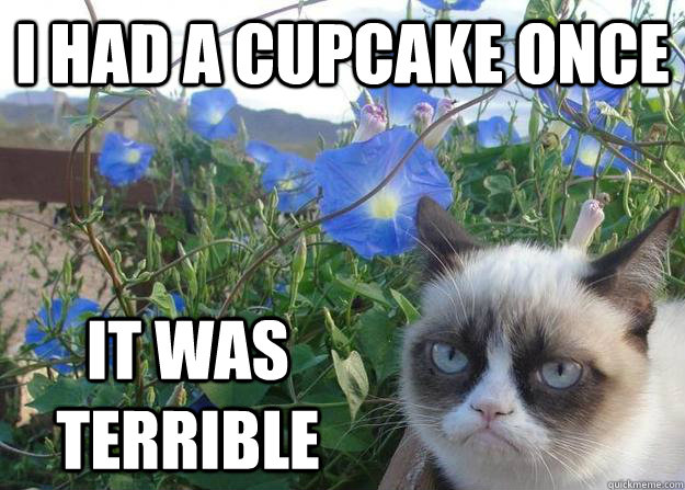 I had a cupcake once it was terrible