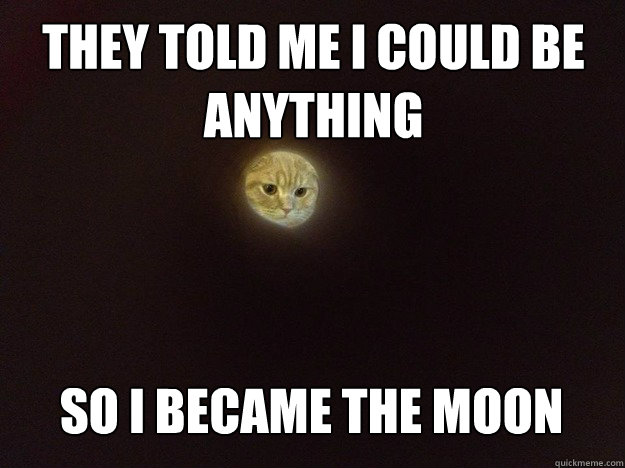 They told me I could be  anything So I became the moon