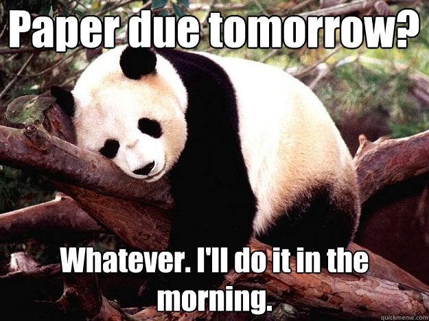 Paper due tomorrow? Whatever. I'll do it in the morning.   Procrastination Panda