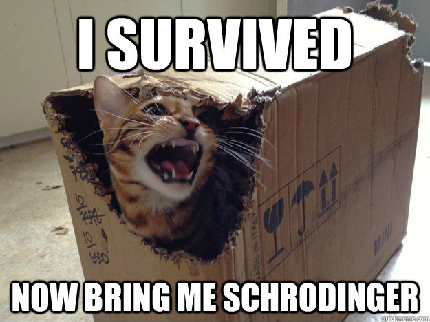 I survived now bring me Schrodinger