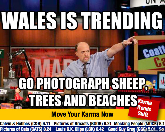 wales is trending go photograph sheep, trees and beaches - wales is trending go photograph sheep, trees and beaches  Mad Karma with Jim Cramer