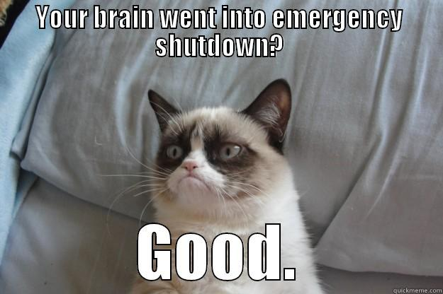 YOUR BRAIN WENT INTO EMERGENCY SHUTDOWN? GOOD. Grumpy Cat