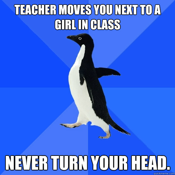 Teacher moves you next to a girl in Class NEVER TURN YOUR HEAD. - Teacher moves you next to a girl in Class NEVER TURN YOUR HEAD.  Socially Awkward Penguin
