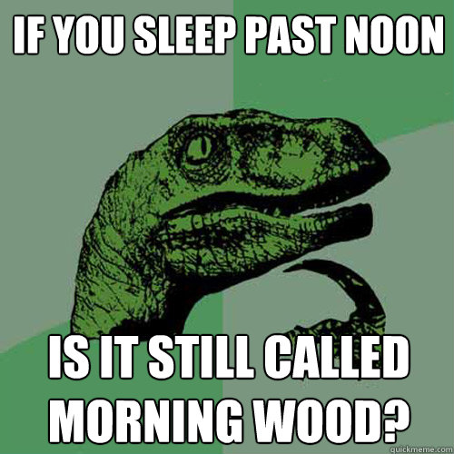 If you sleep past noon Is it still called morning wood? - If you sleep past noon Is it still called morning wood?  Philosoraptor