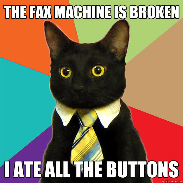 the fax machine is broken i ate all the buttons - the fax machine is broken i ate all the buttons  Business Cat