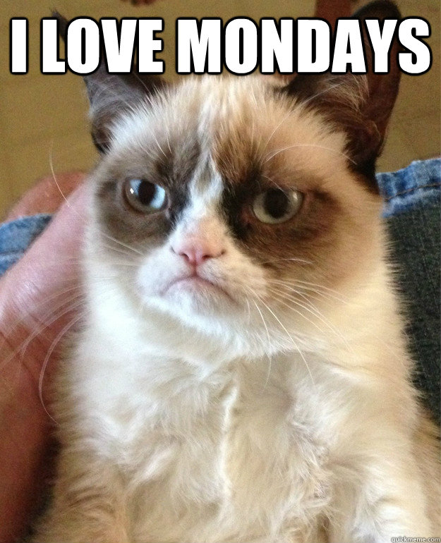 I love mondays  - I love mondays   Grumpy Cat