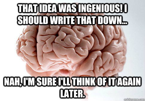 That idea was Ingenious! I should write that down... Nah, I'm sure i'll think of it again later. - That idea was Ingenious! I should write that down... Nah, I'm sure i'll think of it again later.  Scumbag Brain