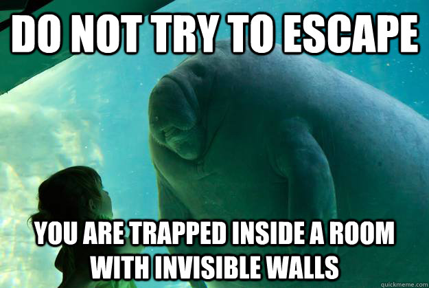 Do not try to escape you are trapped inside a room with invisible walls - Do not try to escape you are trapped inside a room with invisible walls  Overlord Manatee