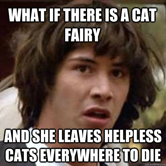 What if there is a cat fairy and she leaves helpless cats everywhere to die  - What if there is a cat fairy and she leaves helpless cats everywhere to die   conspiracy keanu