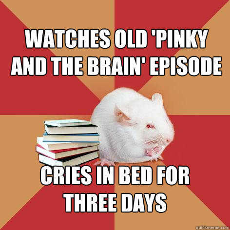 Watches old 'Pinky and the Brain' episode cries in bed for  three days - Watches old 'Pinky and the Brain' episode cries in bed for  three days  Science Major Mouse