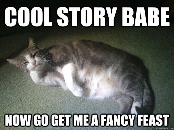 Fancy Meme: Cool Story Babe Now Go Get Me A Fancy Feast