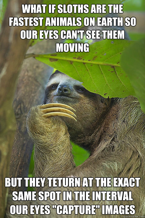 What if sloths are the fastest animals on earth so our eyes can't see them moving but they teturn at the exact same spot in the interval our eyes