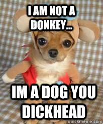 i am not a donkey... Im a dog you dickhead  Angry dog