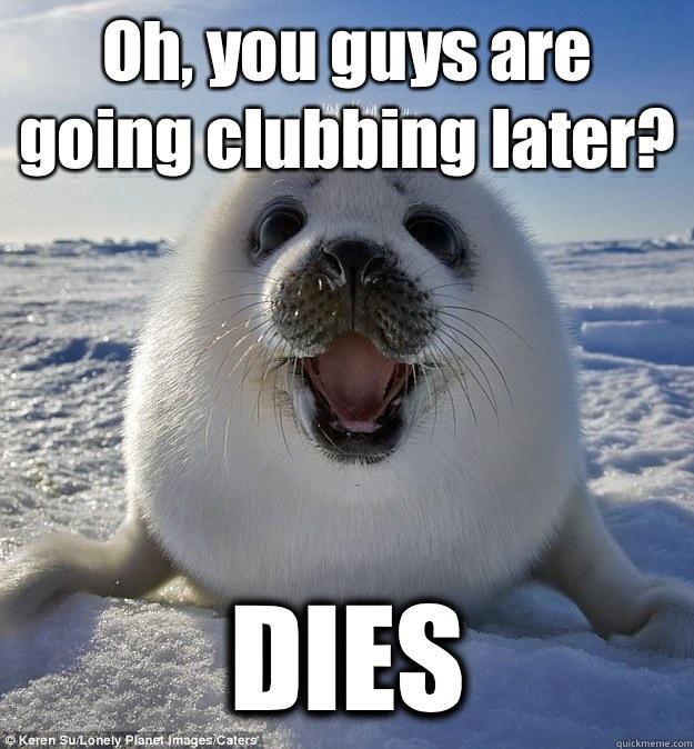 Oh, you guys are going clubbing later? DIES  Easily Pleased Seal