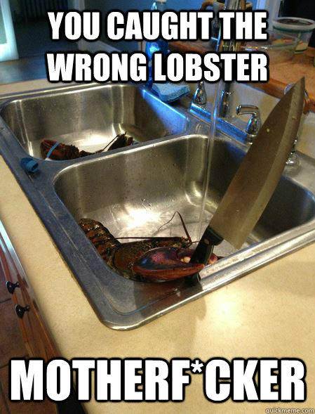You caught the wrong lobster  MotherF*cker - You caught the wrong lobster  MotherF*cker  You caught the wrong one
