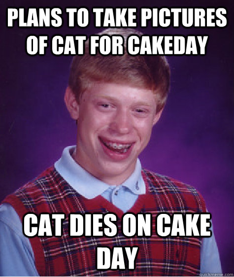 Plans to take pictures of cat for cakeday cat dies on cake day - Plans to take pictures of cat for cakeday cat dies on cake day  Bad Luck Brian