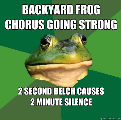 Backyard frog chorus going strong 2 second belch causes  2 minute silence   - Backyard frog chorus going strong 2 second belch causes  2 minute silence    Foul Bachelor Frog