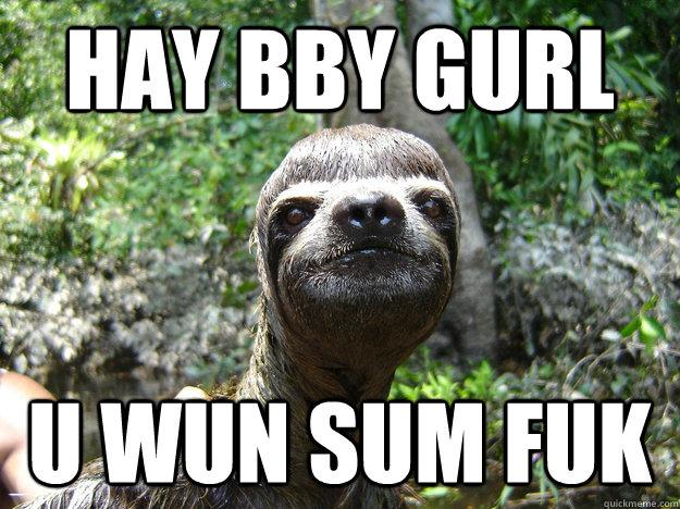 Hay bby gurl u wun sum fuk - Hay bby gurl u wun sum fuk  sloth meme