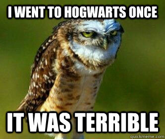 I went to Hogwarts once It was terrible