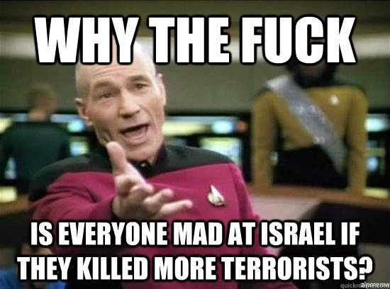 Why the fuck Is everyone mad at israel if they killed more terrorists? - Why the fuck Is everyone mad at israel if they killed more terrorists?  Annoyed Picard HD