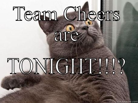 TEAM CHEERS ARE TONIGHT!!!? conspiracy cat