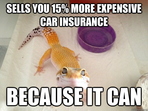 Sells you 15% more expensive car insurance because it can - Sells you 15% more expensive car insurance because it can  Ridiculously Photogenic Gecko