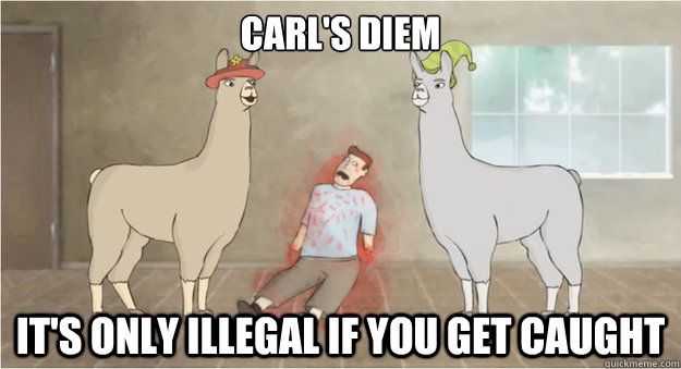 Carls Diem Its Only Illegal If You Get Caught Llamas With Hats