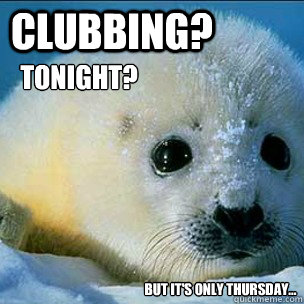 Clubbing?  Tonight? But It's Only Thursday... - Clubbing?  Tonight? But It's Only Thursday...  Clubbing Harp Seals