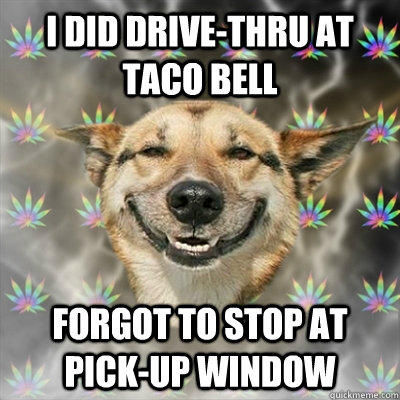 I did Drive-thru at Taco Bell Forgot to stop at pick-up window  Stoner Dog