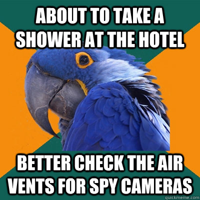 about to take a shower at the hotel better check the air vents for spy cameras - about to take a shower at the hotel better check the air vents for spy cameras  Paranoid Parrot