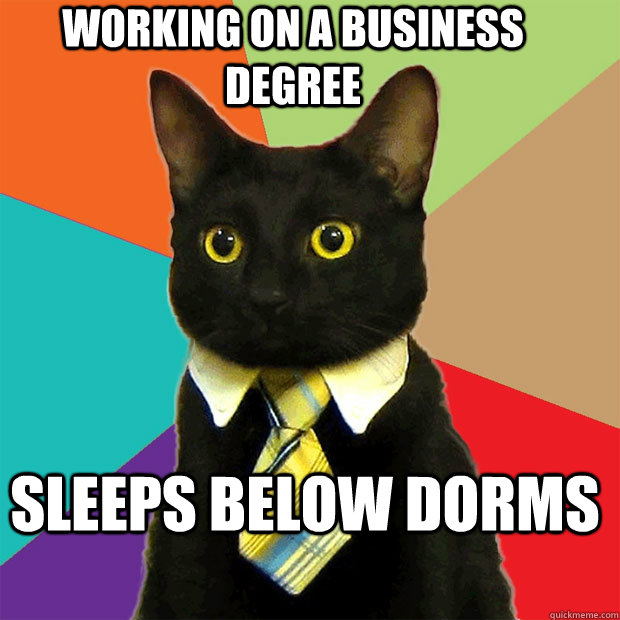 Working on a business degree Sleeps below dorms - Working on a business degree Sleeps below dorms  Misc