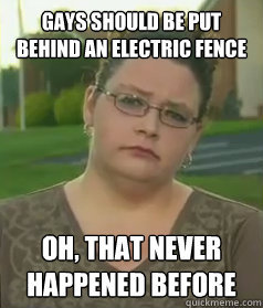 Gays should be put behind an electric fence Oh, that never happened before