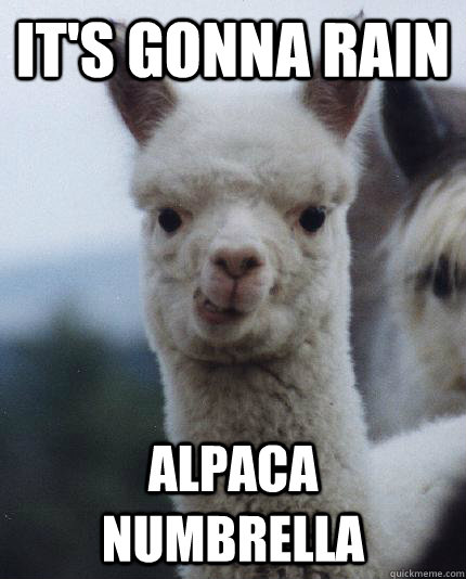 IT'S GONNA RAIN ALPACA NUMBRELLA