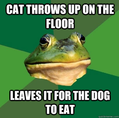 Cat throws up on the floor Leaves it for the dog to eat - Cat throws up on the floor Leaves it for the dog to eat  Foul Bachelor Frog