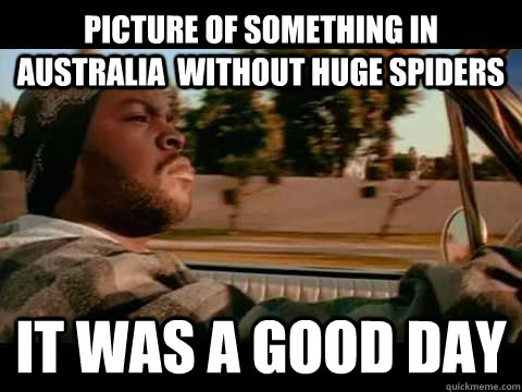 Picture of something in australia  without huge spiders it was a good day - Picture of something in australia  without huge spiders it was a good day  Misc