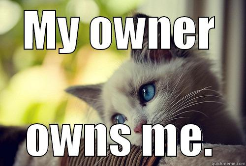 MY OWNER OWNS ME. First World Problems Cat