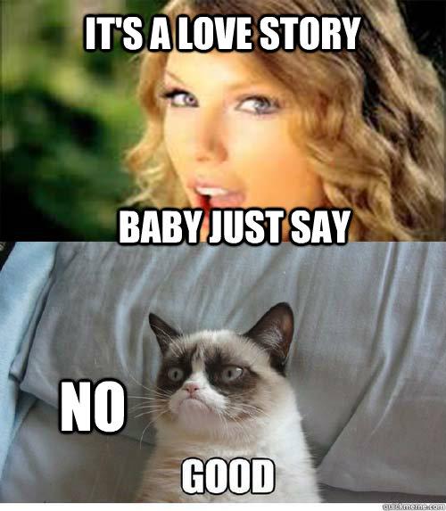 It's a love story Baby just say NO - It's a love story Baby just say NO  Taylor Swift Cat meme