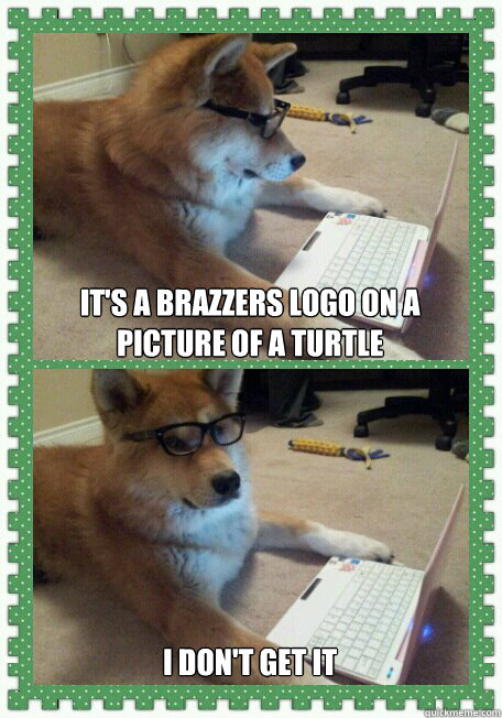 It's a brazzers logo on a picture of a turtle I don't get it