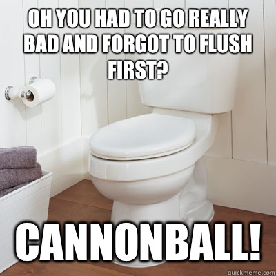 Oh you had to go really bad and forgot to flush first? CANNONBALL!
