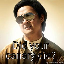 DID YOUR CANARY DIE? Mr Chow