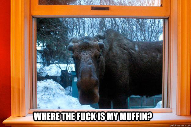 where the fuck is my muffin?