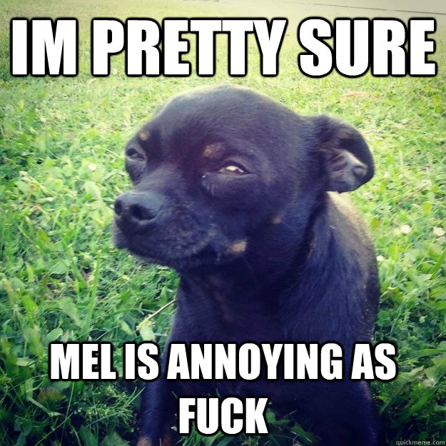 IM PRETTY SURE mel is annoying as fuck - IM PRETTY SURE mel is annoying as fuck  Skeptical Dog