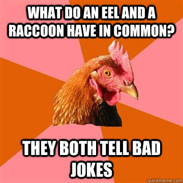 What do an eel and a raccoon have in common? they both tell bad jokes  Anti-Joke Chicken