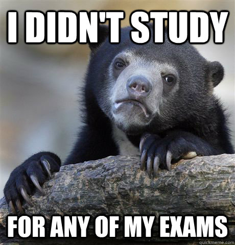 I didn't Study For any of my exams - I didn't Study For any of my exams  Confession Bear