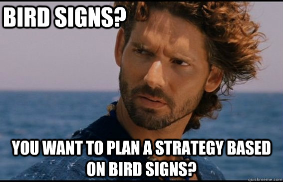 Bird Signs? You want to plan a strategy based on bird signs?  Skeptical Hector