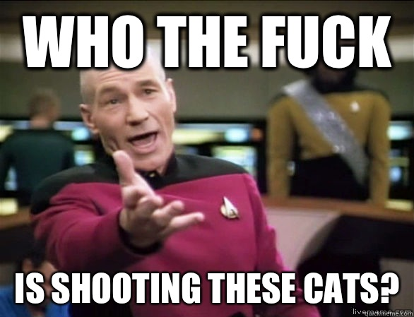 who the fuck Is shooting these cats? - who the fuck Is shooting these cats?  Annoyed Picard HD
